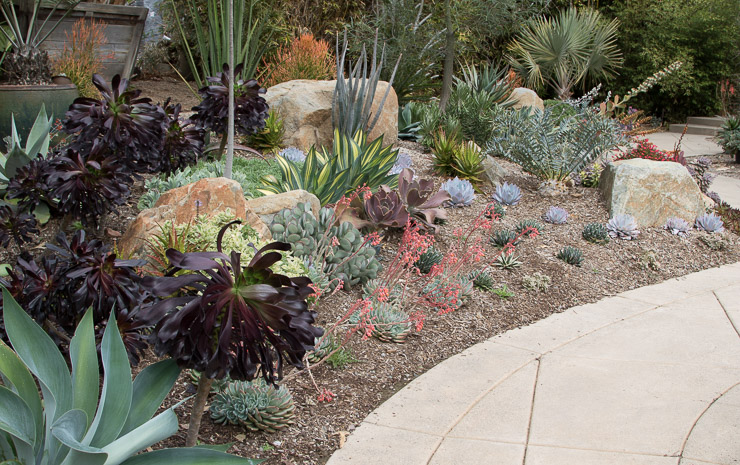 Landscape Design Display Garden Rancho Santa Fe, CA